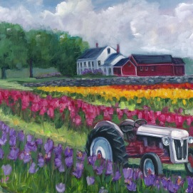 Tractoring through the tulips-sm